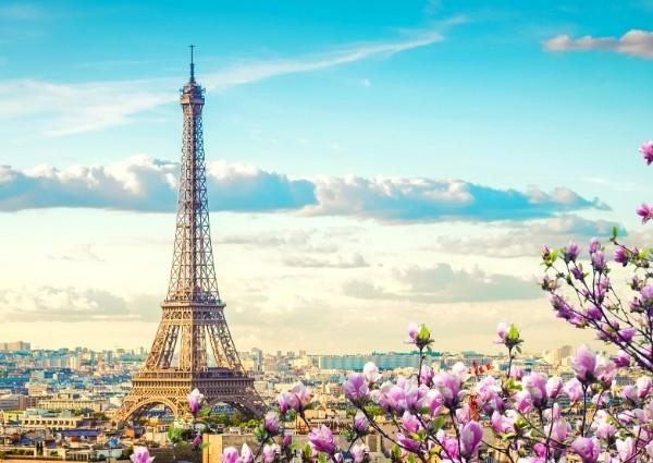 Investir dans l'immobilier en Île-de-France : Paris