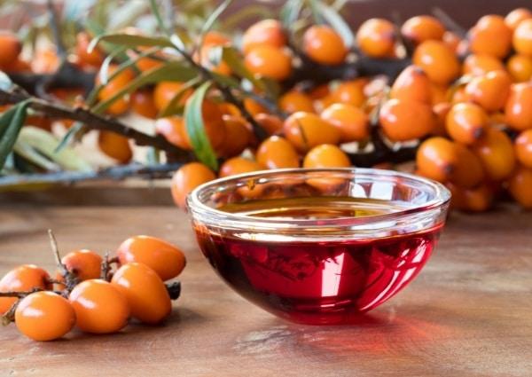 Bruleur Omega à l'huile d'Argousier